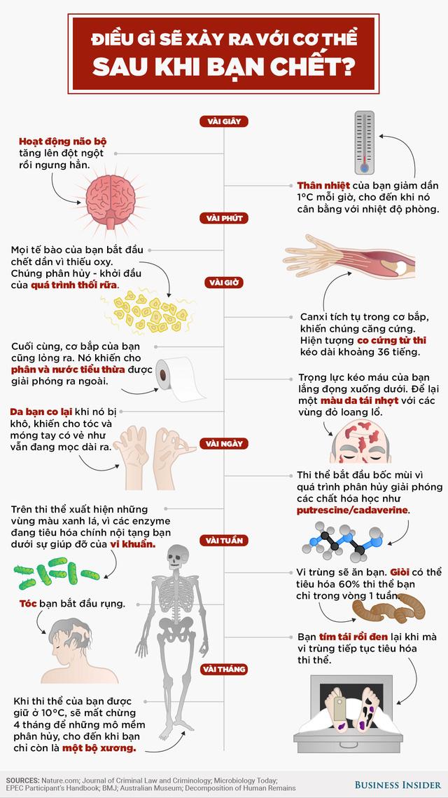Quá trình sau khi chết của một cơ thể con người