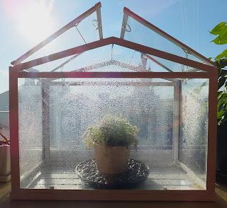 sundew greenhouse