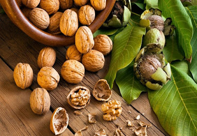 walnuts-soybean-may-prevent-risk-for-diabetes