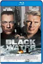 Black Water (2018) HD 720p Subtitulados