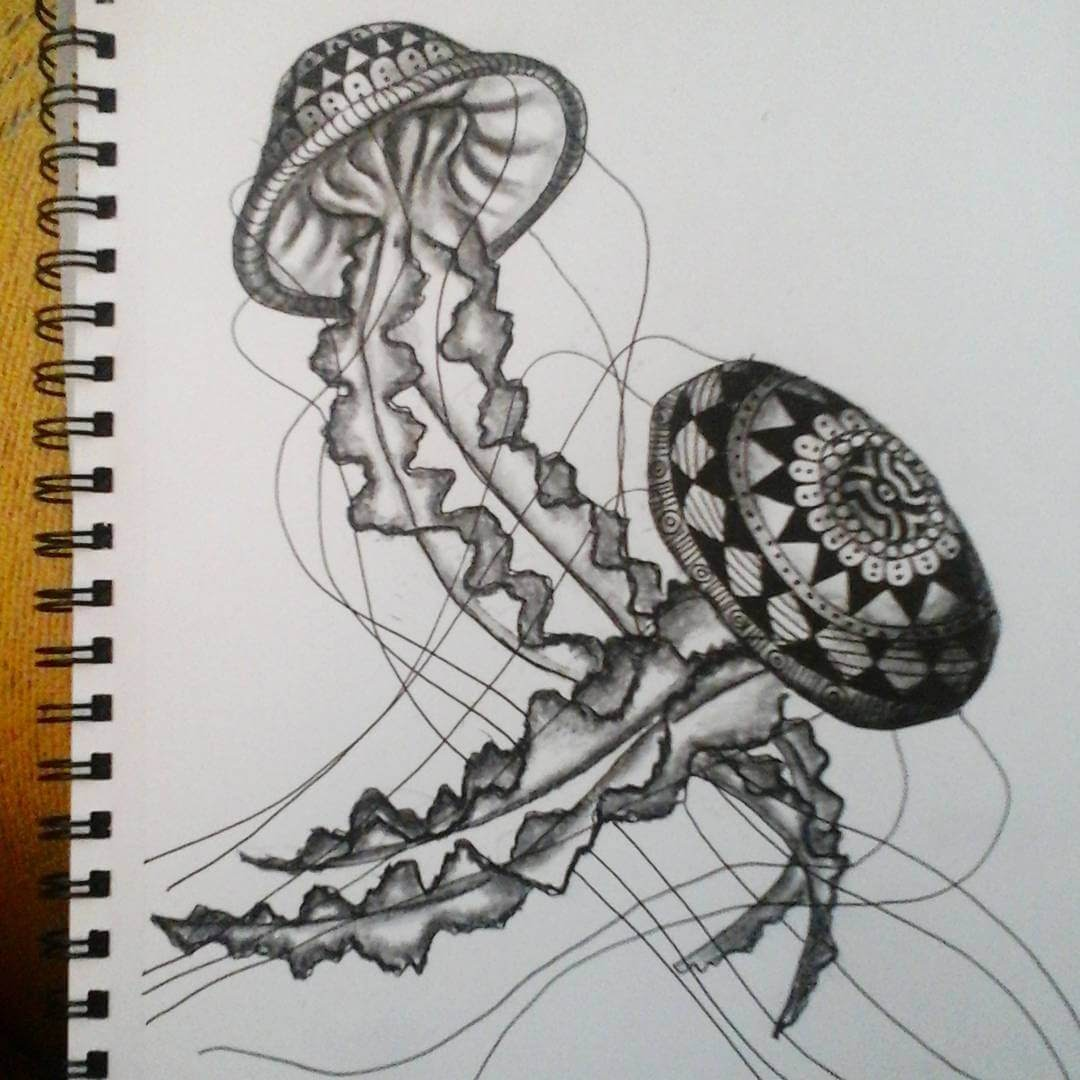 08-Jellyfish-Savanna-Zentangle-Wild-Animal-Drawings-www-designstack-co