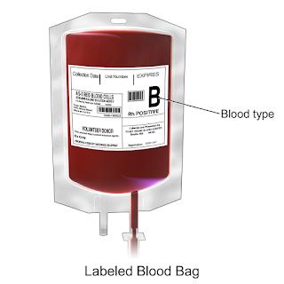 kantung-darah-transfusi-darah