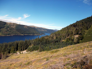 thirlmere from Wythburn