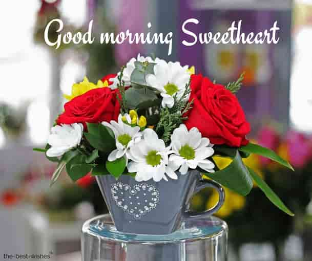 good morning sweetheart rose images
