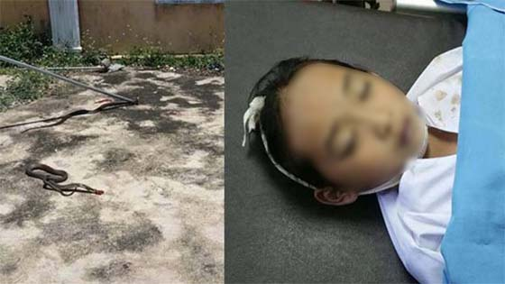 Ibu Nafi Anak Maut Dipatuk Ular 'Hidup Semula'