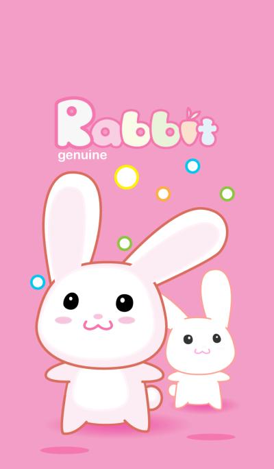 Rabbit genuine