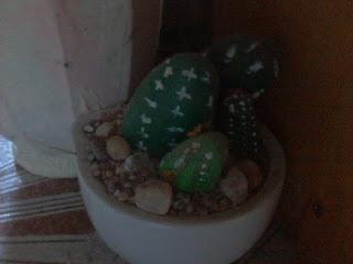 sassi dipinti cactus