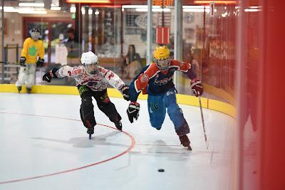 Fast Skater