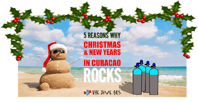 https://thedivebus.blogspot.com/2018/09/5-great-reasons-to-spend-this-christmas.html