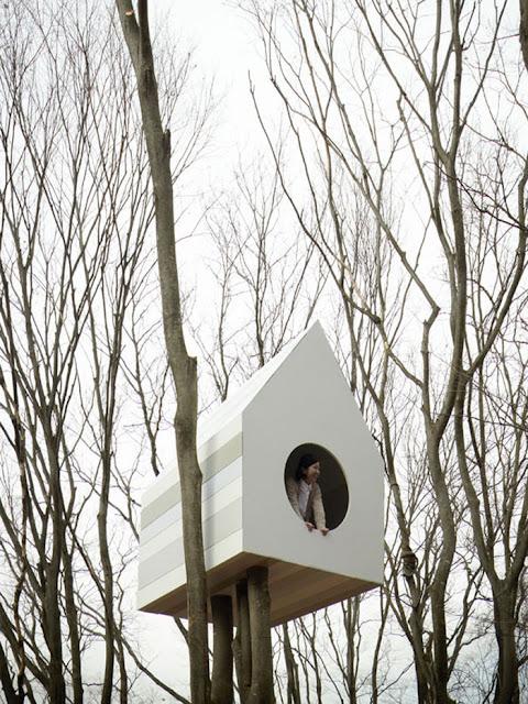 شاهد صور 29 منزل فوق الأشجار سيعجبك أن تعيش بها  Top-29-Treehouses-Andu-Momofuku