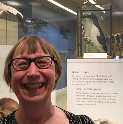Jan Thornhill with stuffed Great Auk ROM