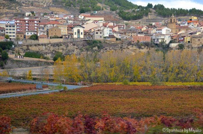 El Tren del Vino de La Rioja 北スペイン・リオハの紅葉する葡萄畑と村々をワイン列車の車窓から