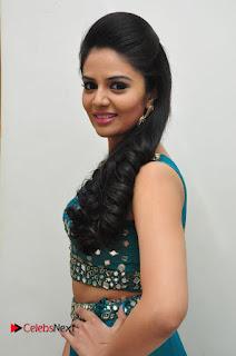 Sree Mukhi Pictures at Gentleman Audio Launch  0093