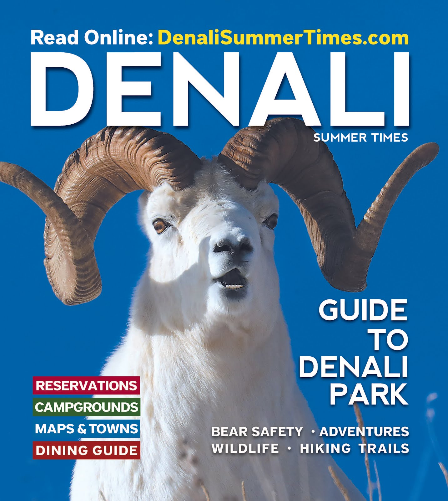 Denali 2020 EBook