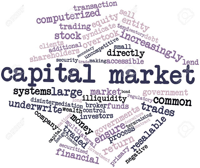 indian capital market notes