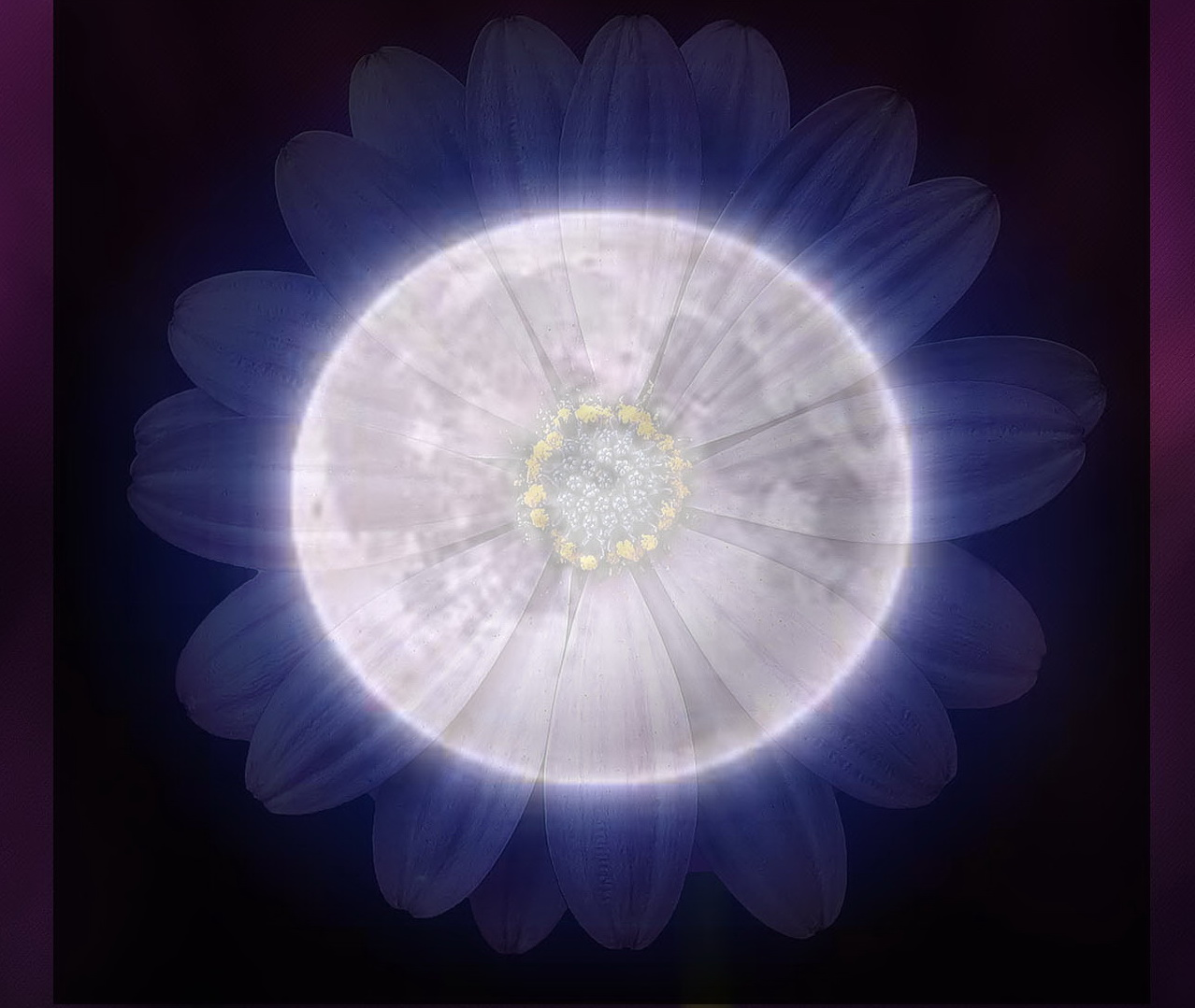Aeion s Astrology and Tarot In Bloom Full Flower Moon in Scorpio