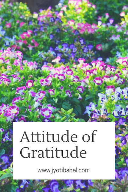 Attitude of Gratitude - Looking Back at Jan to April 2018  #GratitudeCircle