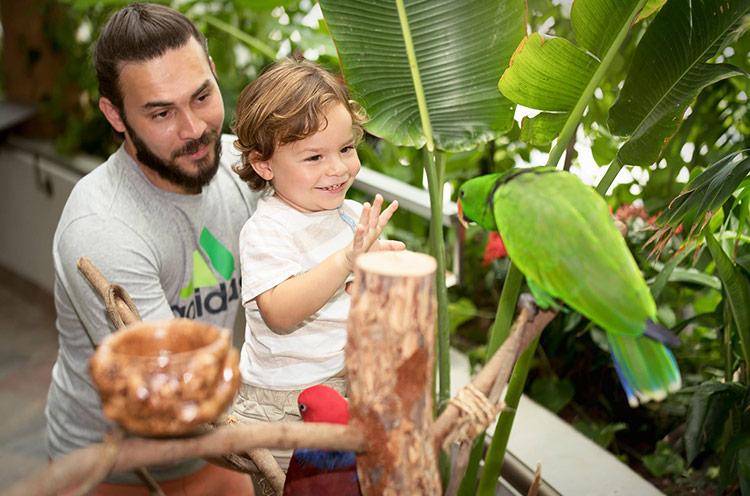 Green Planet Tropical Rainforest in the Desert of Dubai