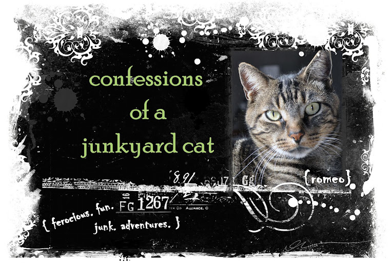 Confessions of a Junkyard Cat