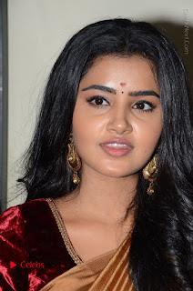 Actress Anupama Parameswaran Stills in Silk Saree with Shatamanam Bhavati Team at Sandhya Theater  0030.JPG