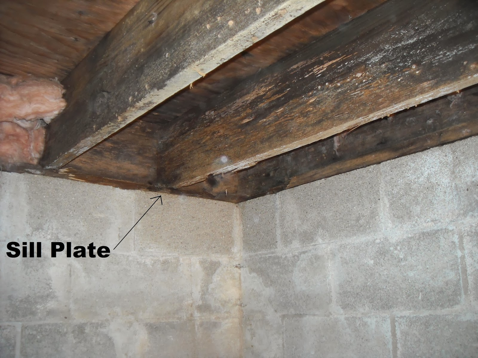 Diy Deck Waterproofing Indiana Crawlspace Repair And Waterproofing Sill Plate