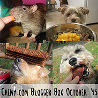 Chewy.com Blogger Box October 2015