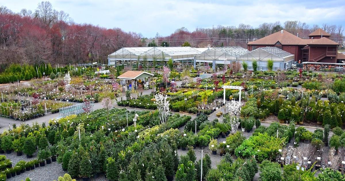 Superbe Washington Gardener Magazine