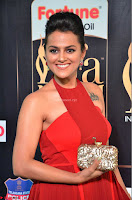 Sraddha in Sleeveless Red Gown at IIFA Utsavam Awards 2017  Day 2  HD Exclusive 17.JPG