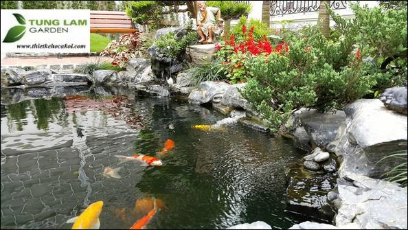 Thiết kế hồ cá Koi Nhật, TungLam Garden, thi công hồ cá Koi Nhật