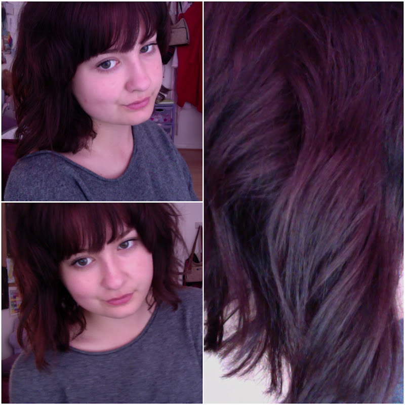 Gallery For > Dark Brown Purple Hair Tumblr