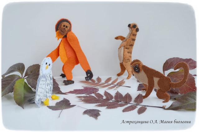 опыты-с-осенними-листьями-пальчиковый-театр- сурикат-орангутан-сова-мартышка