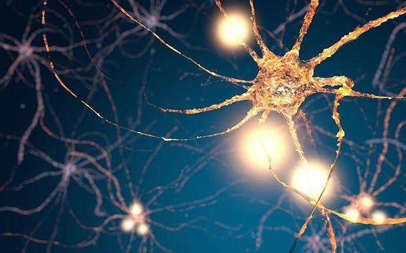 دراسة تكشف عن جينات ذات صلة بالشيزوفرينيا قد تكون سببًا مباشرًا لها