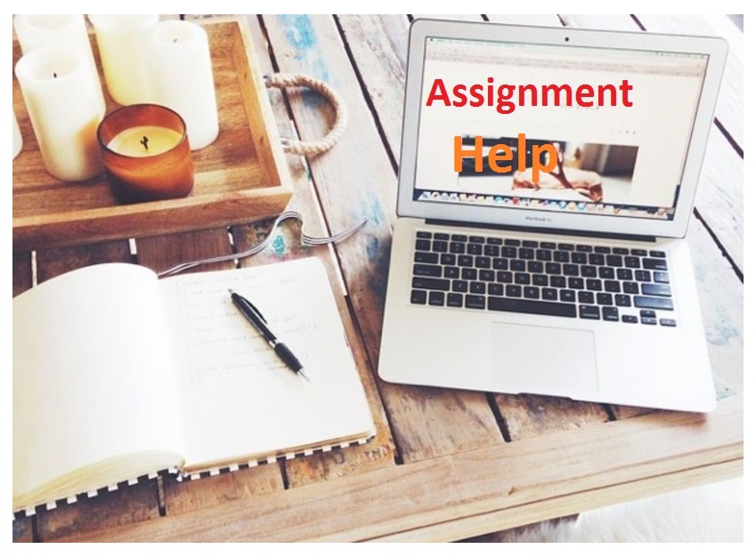 Why you should select assignment help to complete your task?