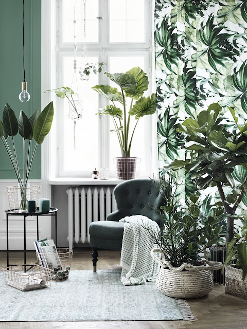 Ideas For Decorating With Houseplants | mi armario en ruinas