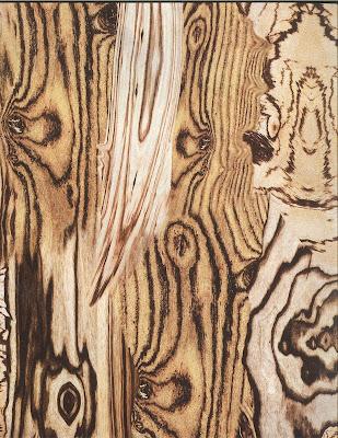 Alexander McQueen - Spring Summer 2009 - Wood print detail