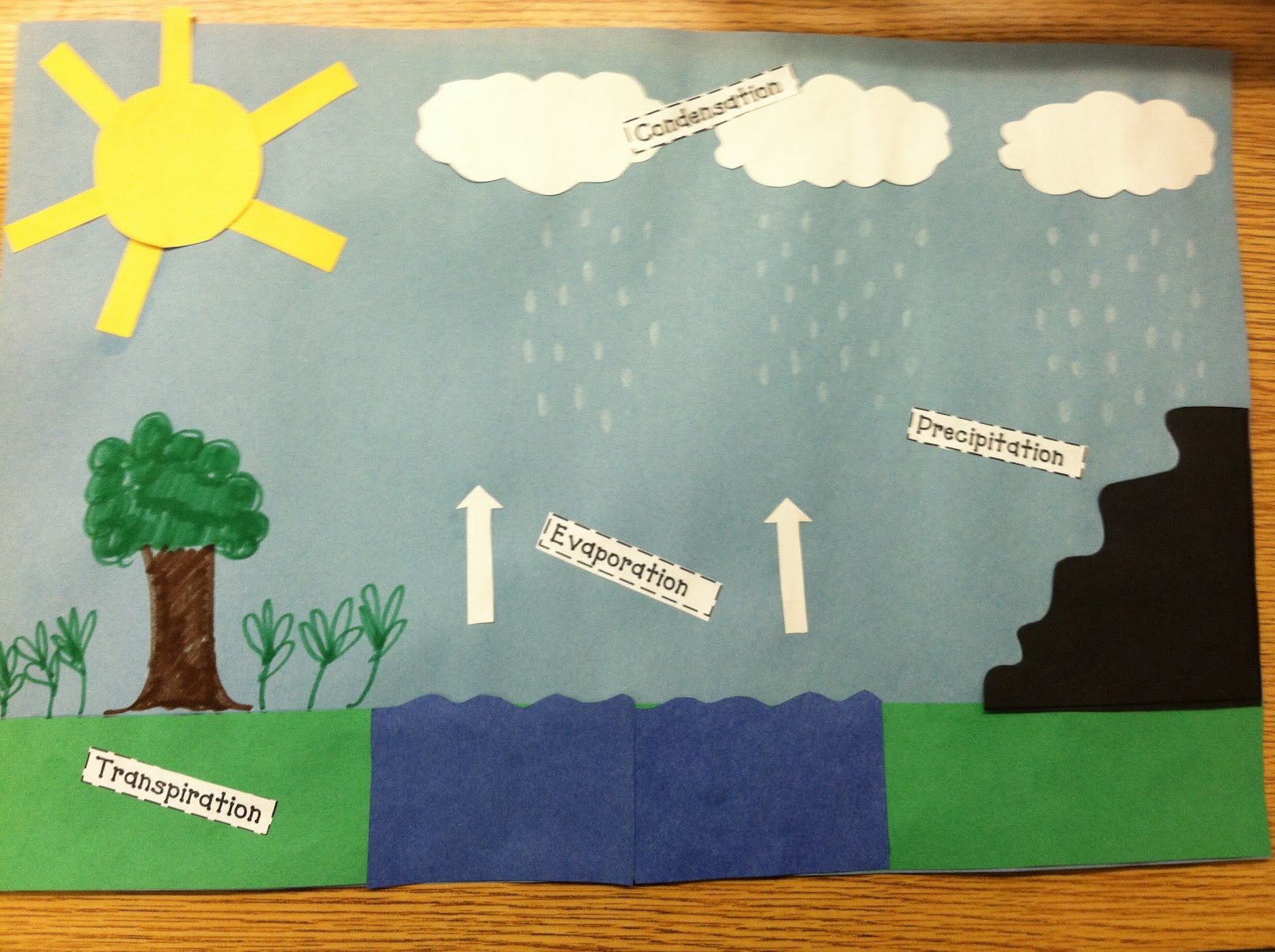 Water Cycle Project Ideas For 5th Grade