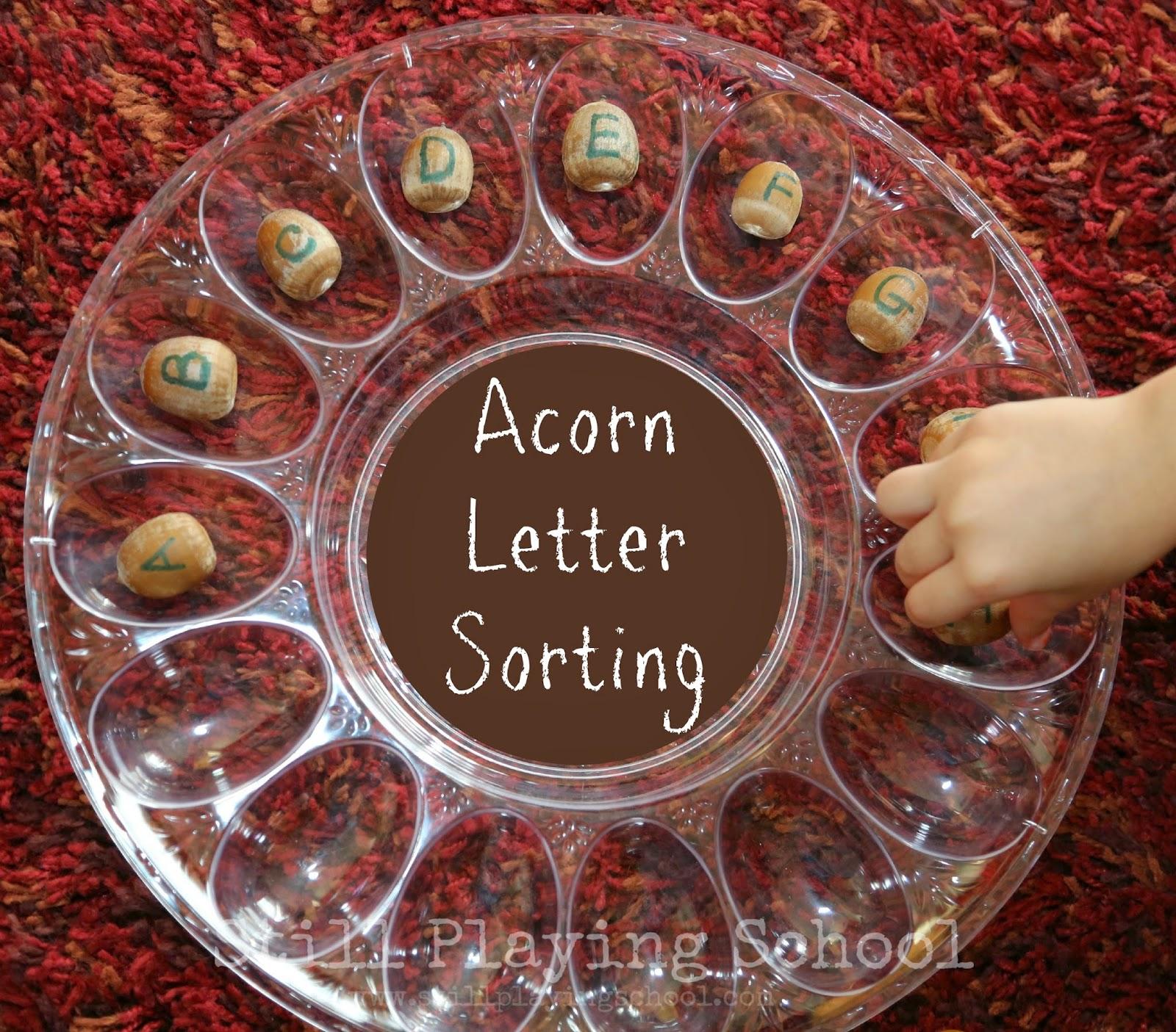 Diy Acorn Letter Manipulatives