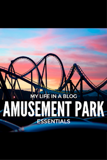 amusement park waterpark essentials bag necessities
