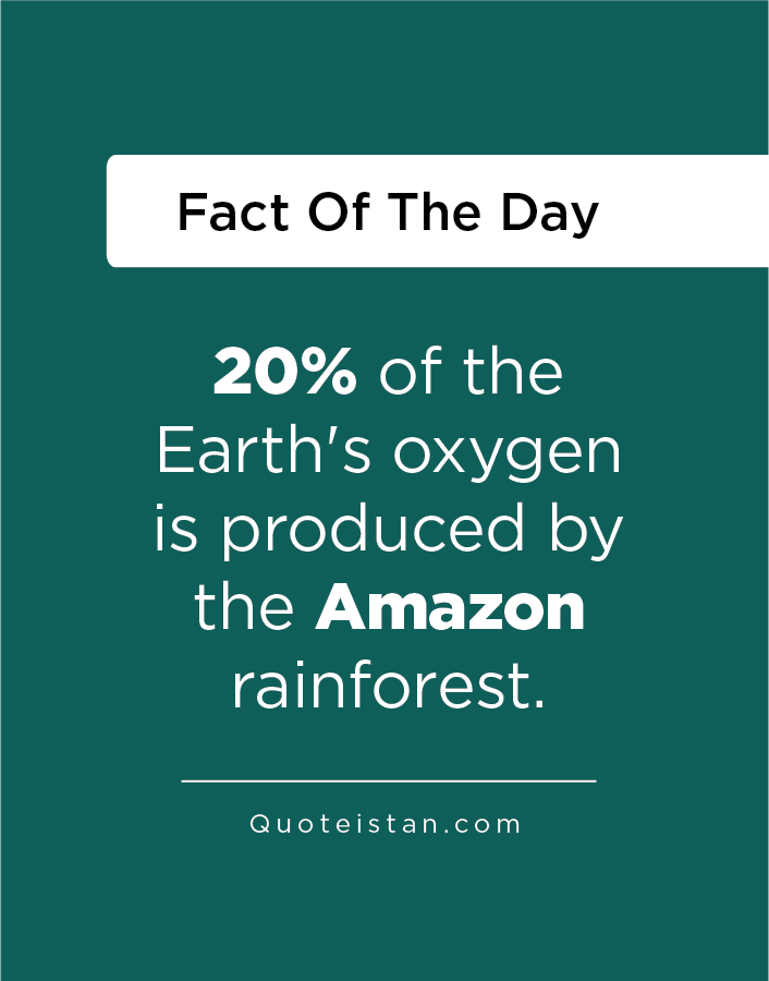 20% of the Earth's oxygen is produced by the Amazon rain forest.