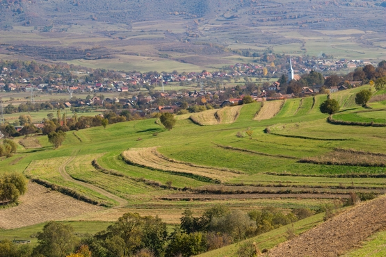 Szüret után van az idő - őszi képek Alsósófalváról