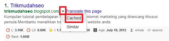 klik cache pada hasil pencarian