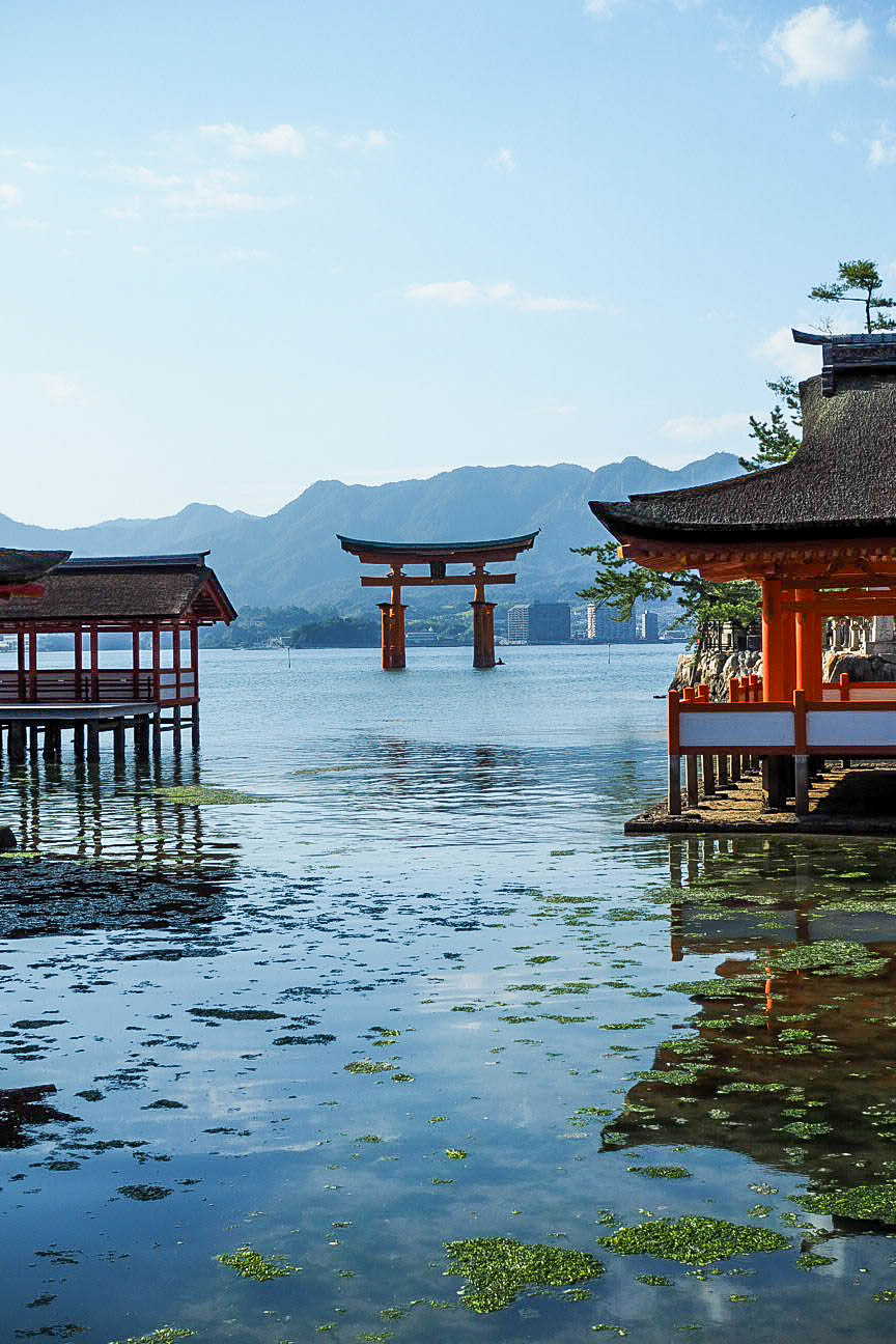 Visiting the Floating Torii Gate of Miyajima, Japan ...
