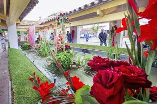 Rosas Roses exposiciones florales