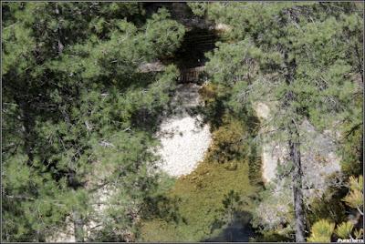 Valla que impide la entrada por el Río Escabas a El Hosquillo (vista desde el parque)