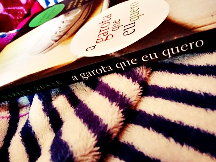 Resenha do livro A garota que eu quero.