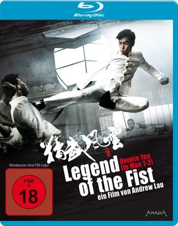Legend Of The Fist 2010 Dual Audio Hindi 480p BluRay 300mb