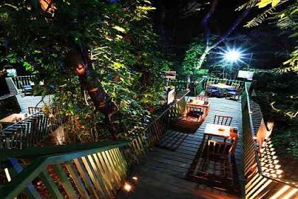 Tempat Wisata yang Sejuk dan Indah Pada Malam Hari Di Forest Walk Babakan Siliwangi Bandung