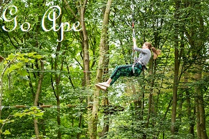 Go Ape Junior Tree Top