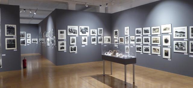Exposicions del museu