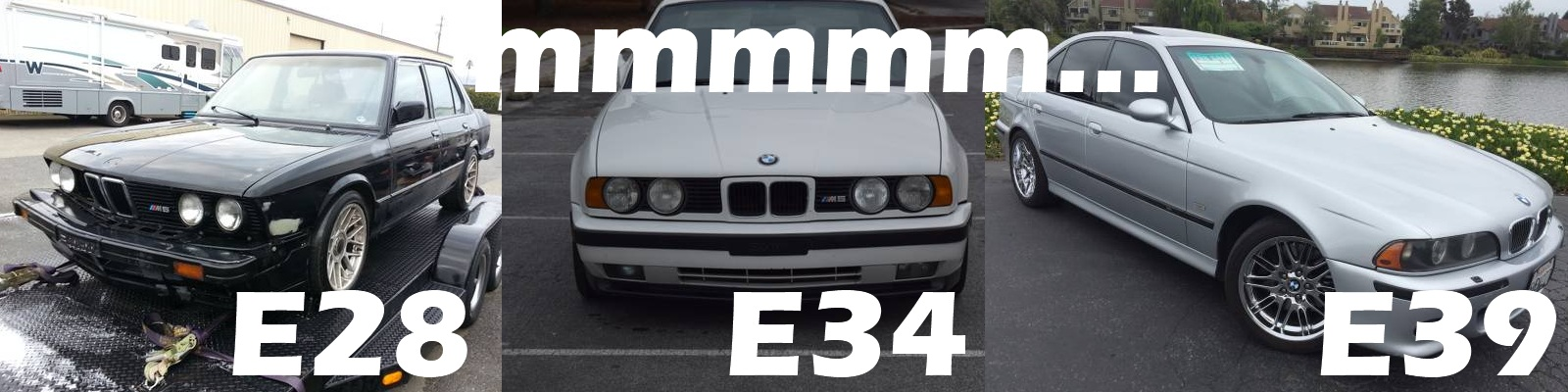 Craigslist San Jose >> Daily Turismo: $10k Used M5 Faceoff: BMW E28 vs E34 vs E39